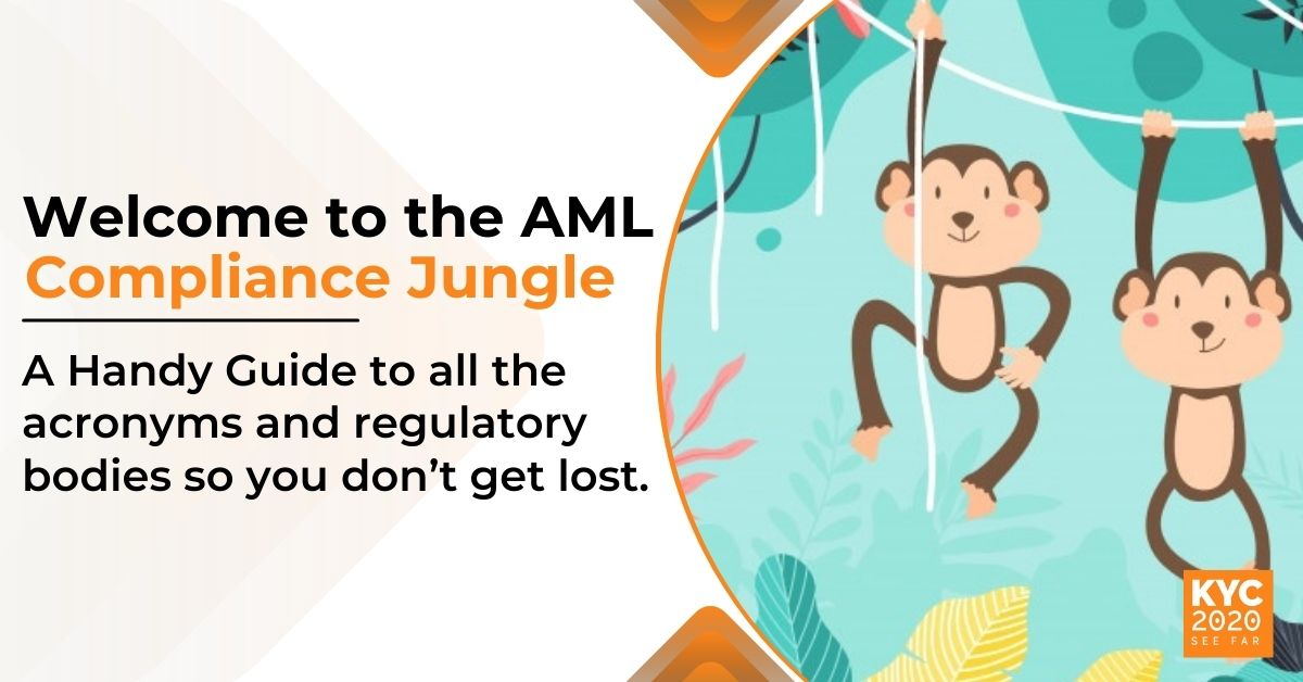 Navigating the AML Compliance Jungle: A Glossary of AML Terms
